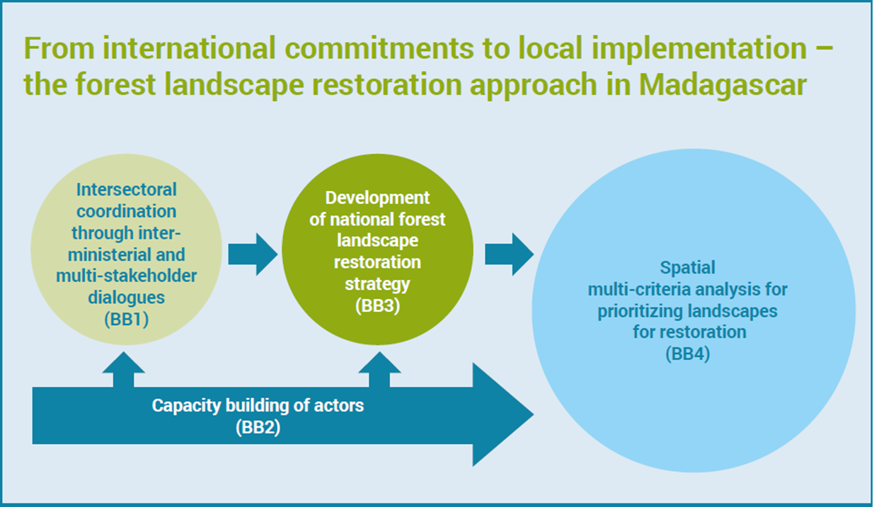 From international commitments to local implementation – the