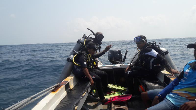 UNDP, ORCA
