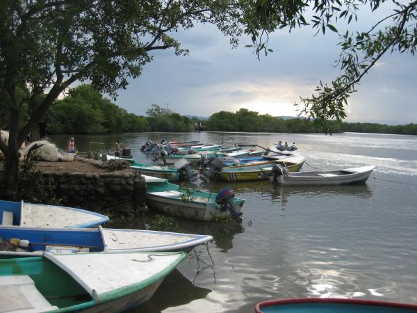 Priority mangrove ecosystem services, such as fishing, are chosen through a participatory process with local communities