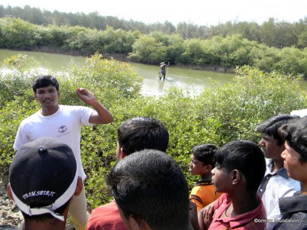Mangrove Conservation Awareness