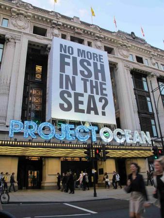Project Ocean banner © ZSL