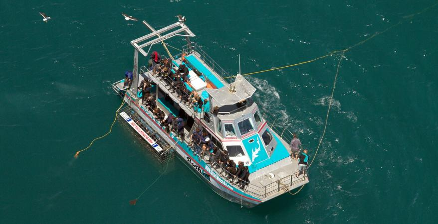 Boat 'Slashfin' from the air (© DICT)