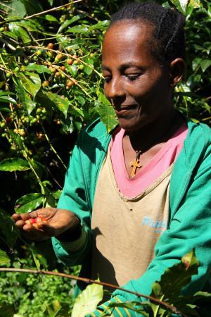 GIZ Ethiopia