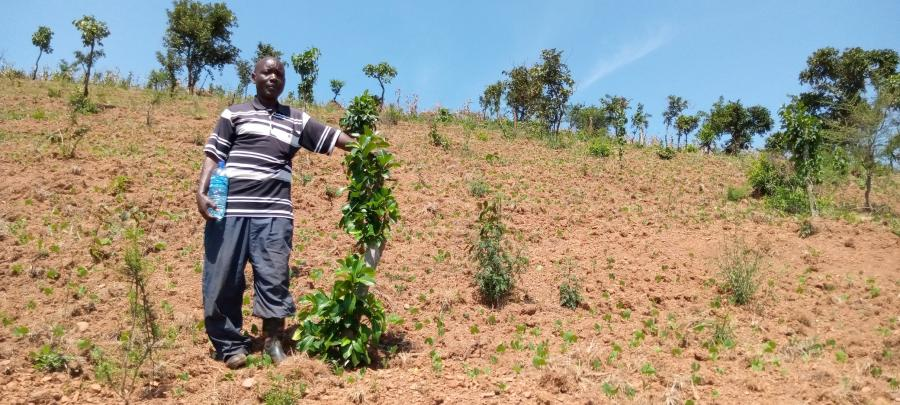 Smart farmers and Transformation