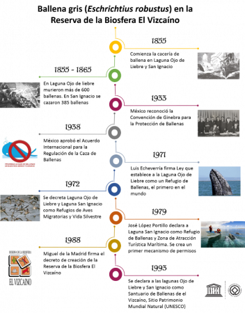 Reserva de la Biosfera El Vizcaíno