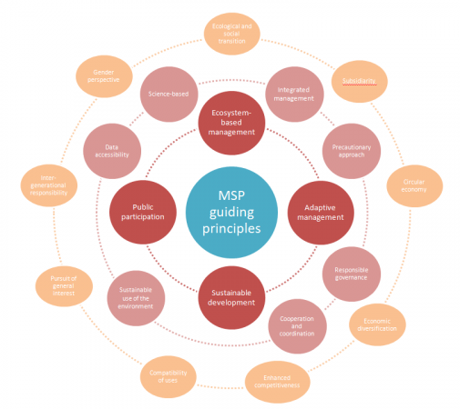 MarSP, 2019