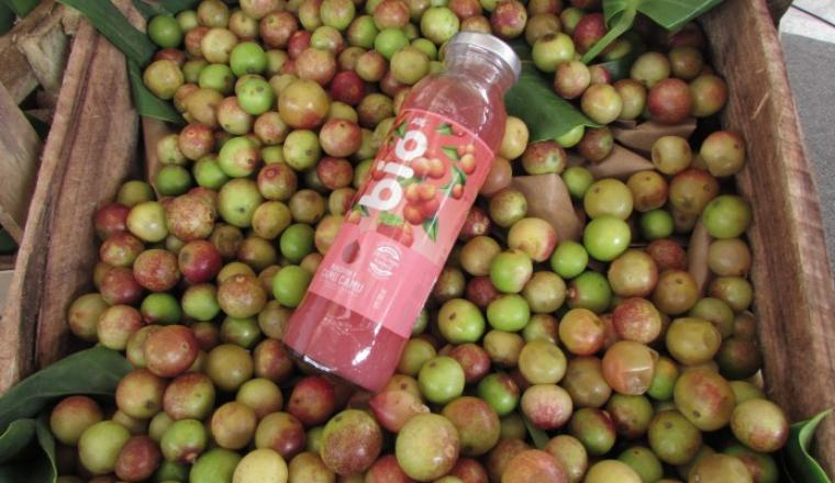 https://semanaeconomica.com/que-esta-pasando/articulos/331445-grupo-aje-lanzo-bebidas-de-super-fruits-de-la-amazonia
