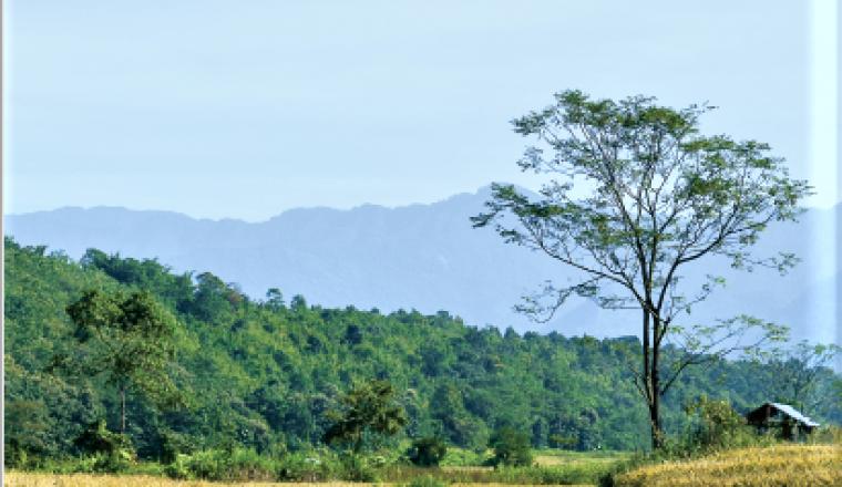 Nagaland State Biodiversity Board