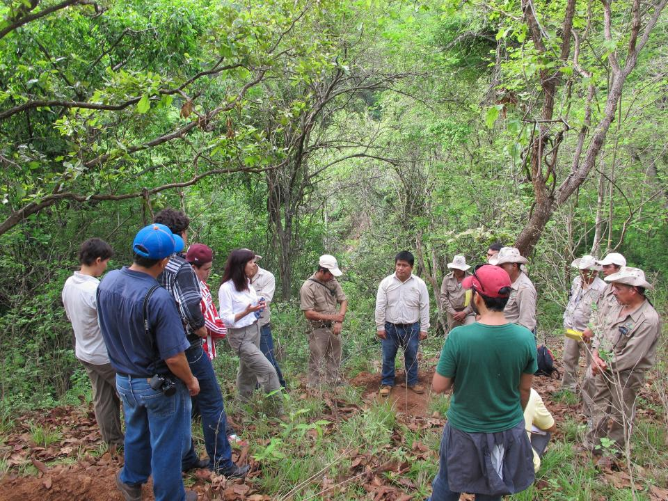 Mexican Fund for Nature Conservation (FMCN)