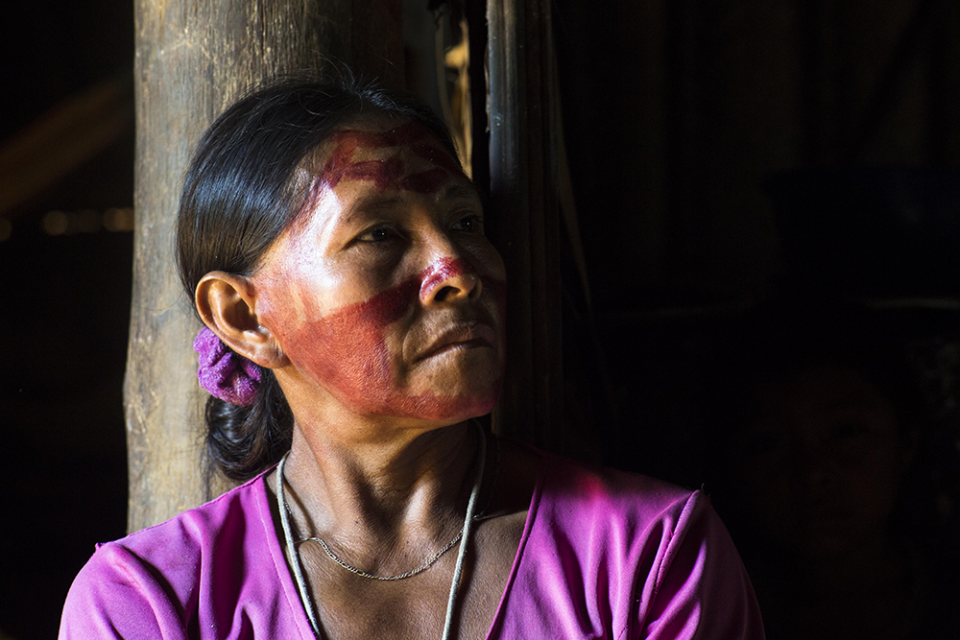 Fundación GAIA Amazonas