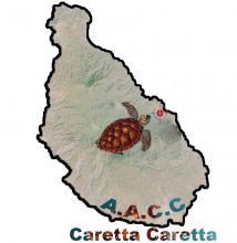 Caretta Association