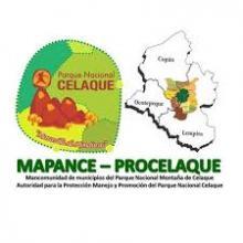 Mancomunidad de Municipios del Parque Nacional Montaña de Celaque (MAPANCE-ProCelaque)