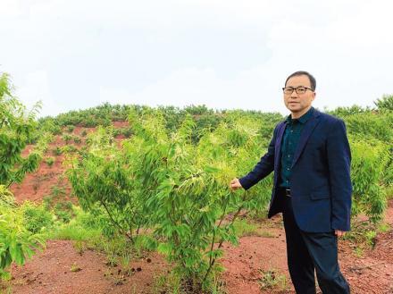 Liu Yang Wang