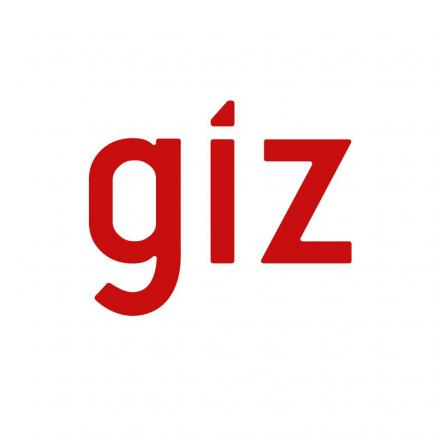 Deutsche Gesellschaft für Internationale Zusammenarbeit  - GIZ  México