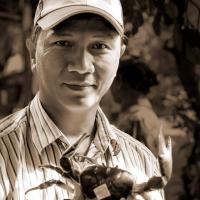 Thao Le Ngoc
