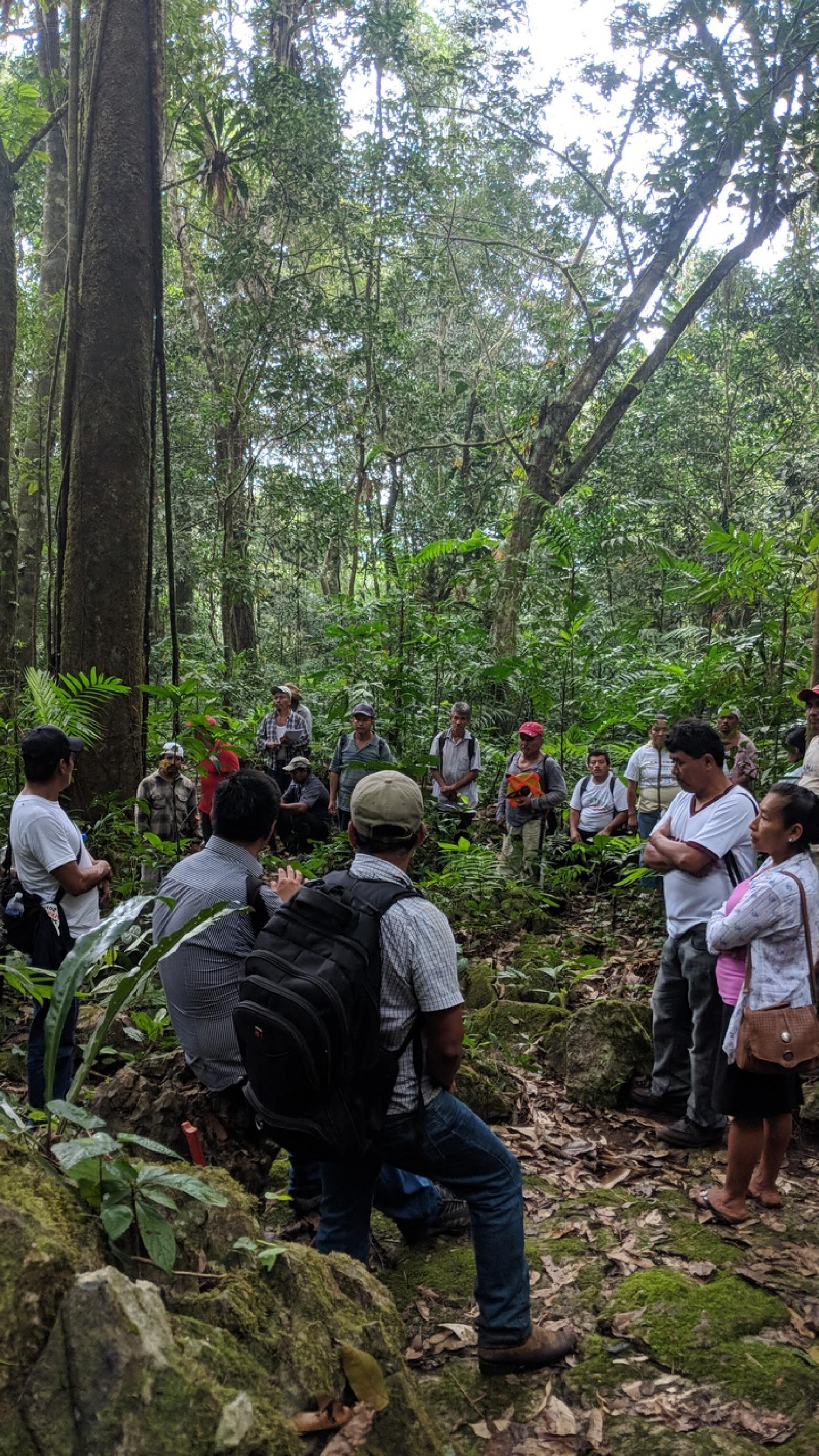 EcoLogic Development Fund
