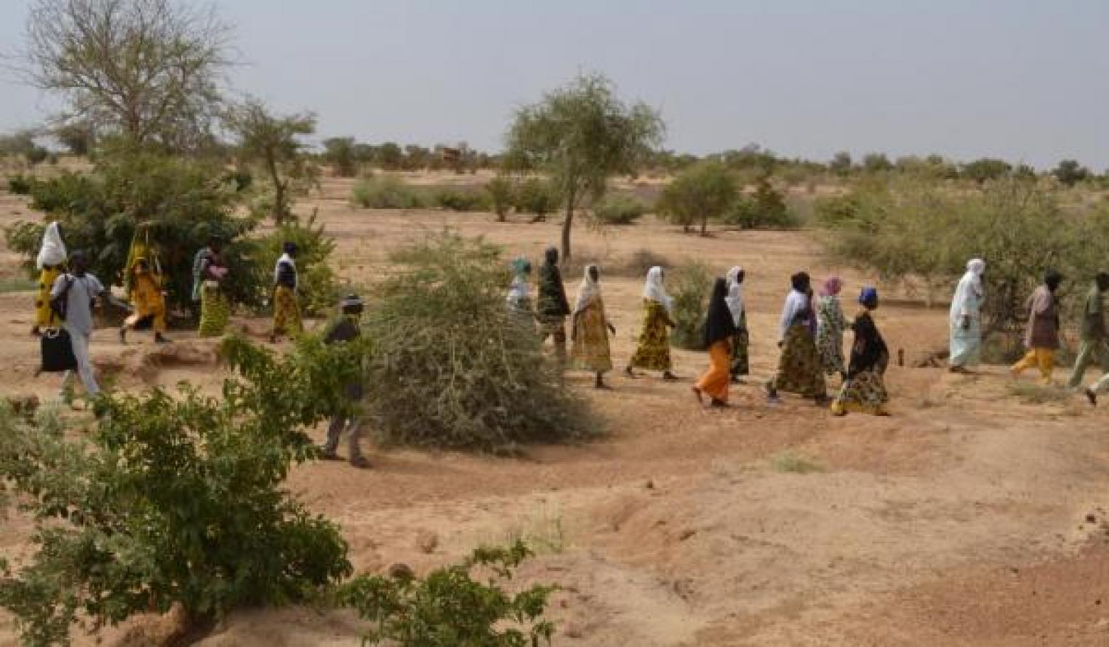IUCN, https://www.iucn.org/theme/ecosystem-management/our-work/environment-and-disasters/ecosystems-protecting-infrastructure-and-communities-epic/burkina-faso