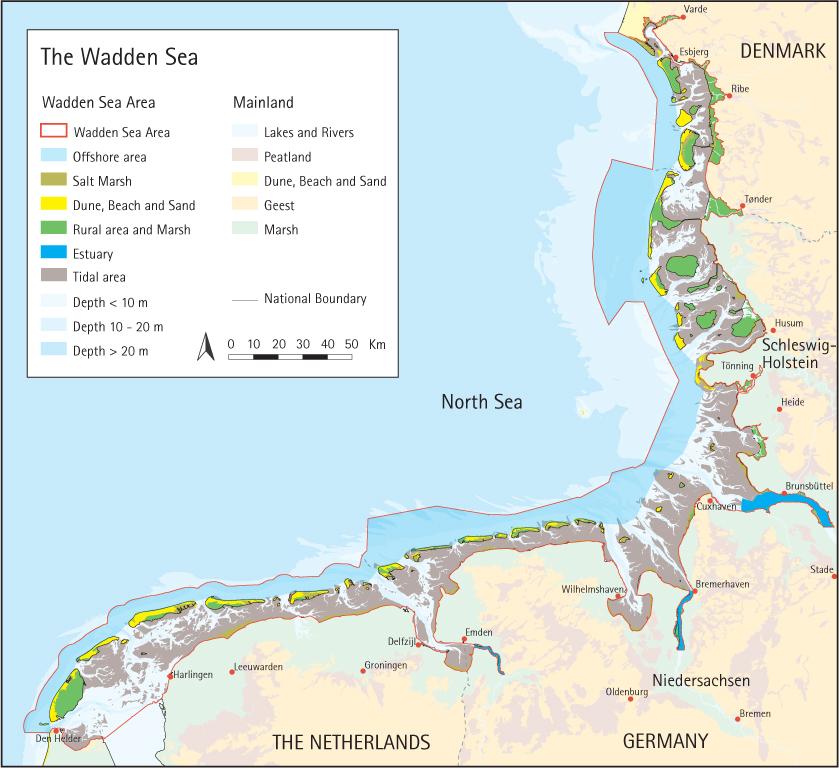 Tag: Wadden Sea